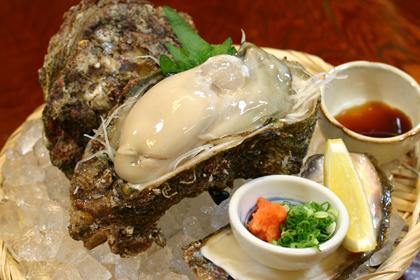 岩牡蠣刺身