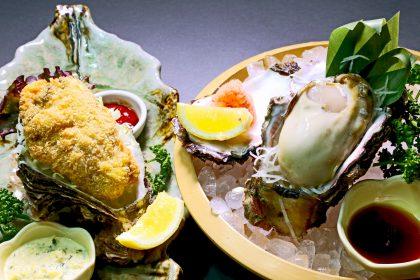 岩牡蠣フライ+刺身